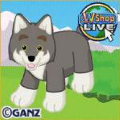 webkinzwolf
